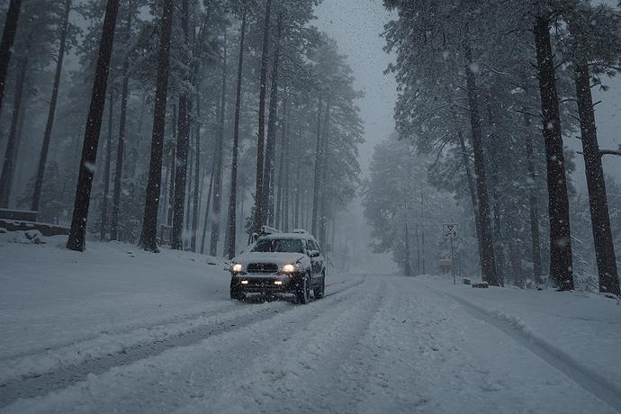 Snow-00024
