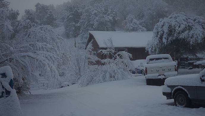 Snow-0004